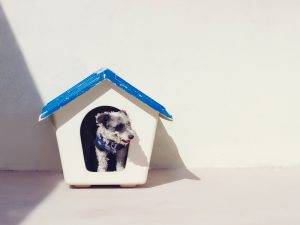 Mistakes To Avoid In Building Or Renovating A Home | Crouch & Lyndon Lawyers